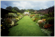 England's oldest herbaceous borders